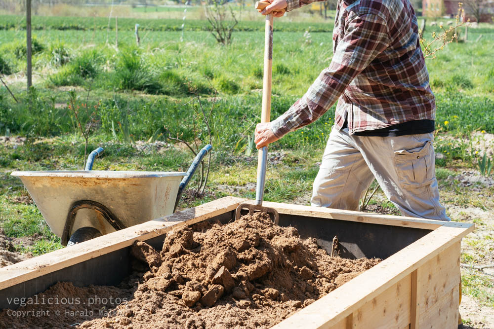 Stock photo of Filling raised bed with soil