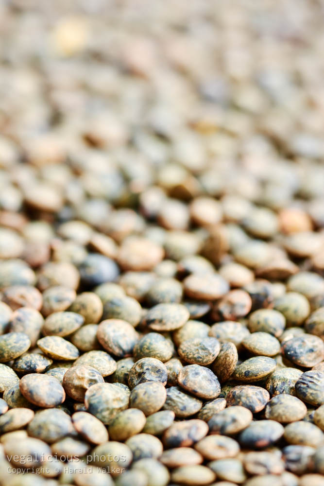 Stock photo of French lentils