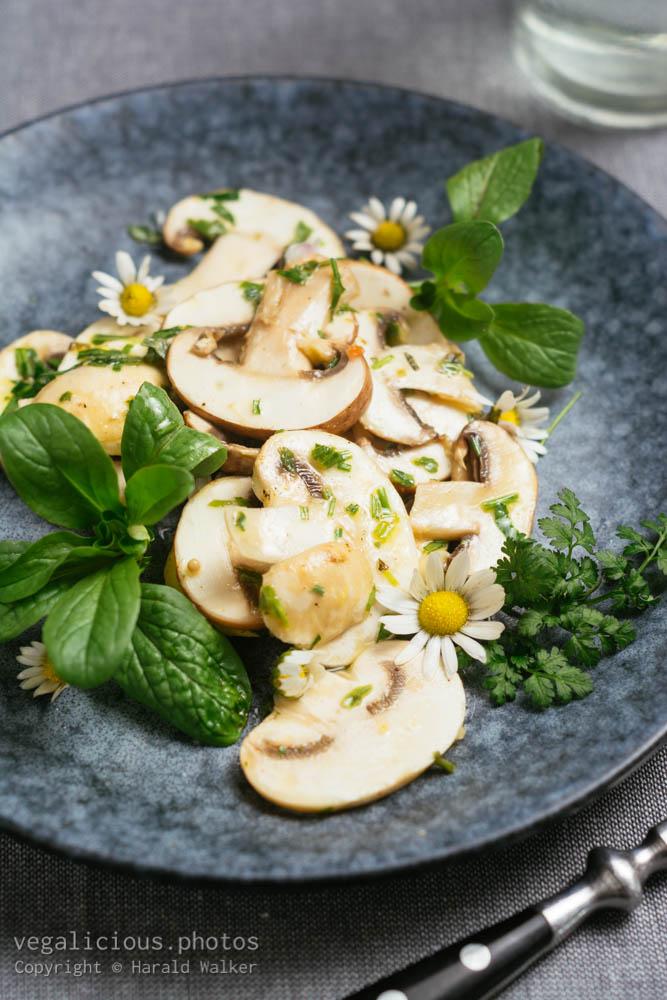 Stock photo of Fresh Mushroom Salad with Mache and Daises