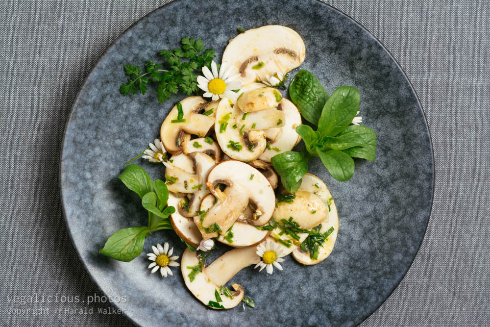 Stock photo of Fresh Mushroom Salad with Mache and Daises