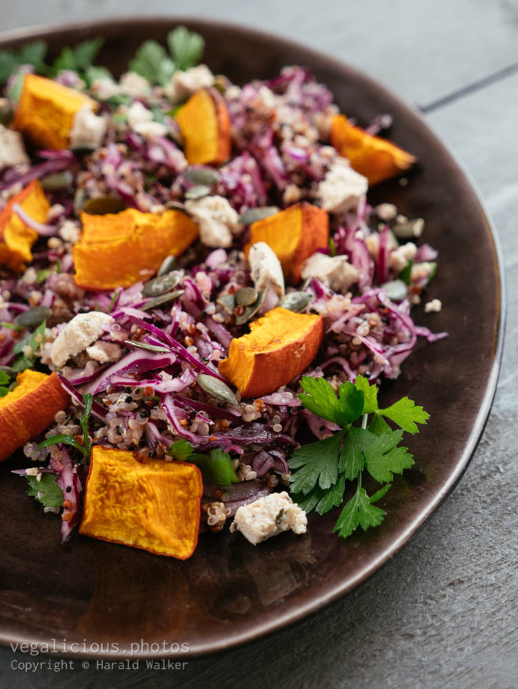 Stock photo of Red Cabbage and Quinoa Salad with Roasted Winter Squash and Vegan Feta