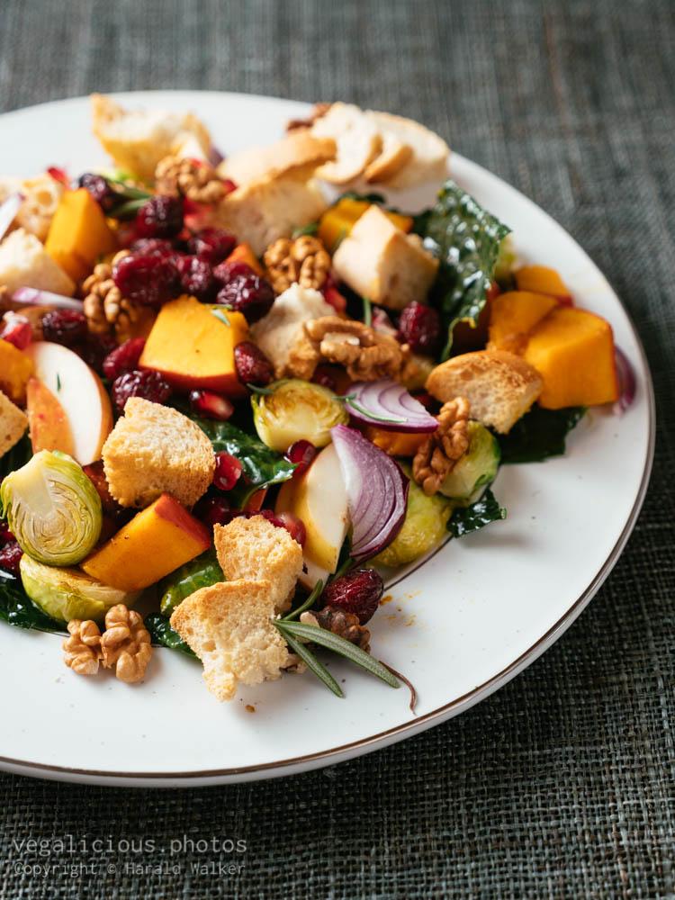 Stock photo of Abundant Harvest Panzanella Salad