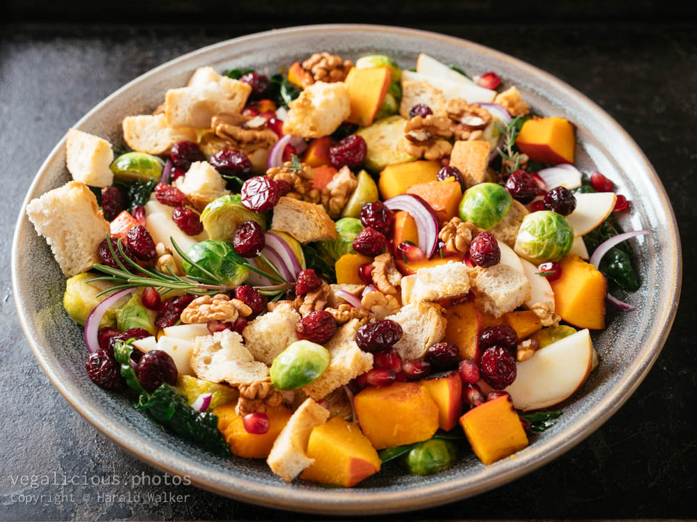 Stock photo of Abundant Harvest Panzanella Salad