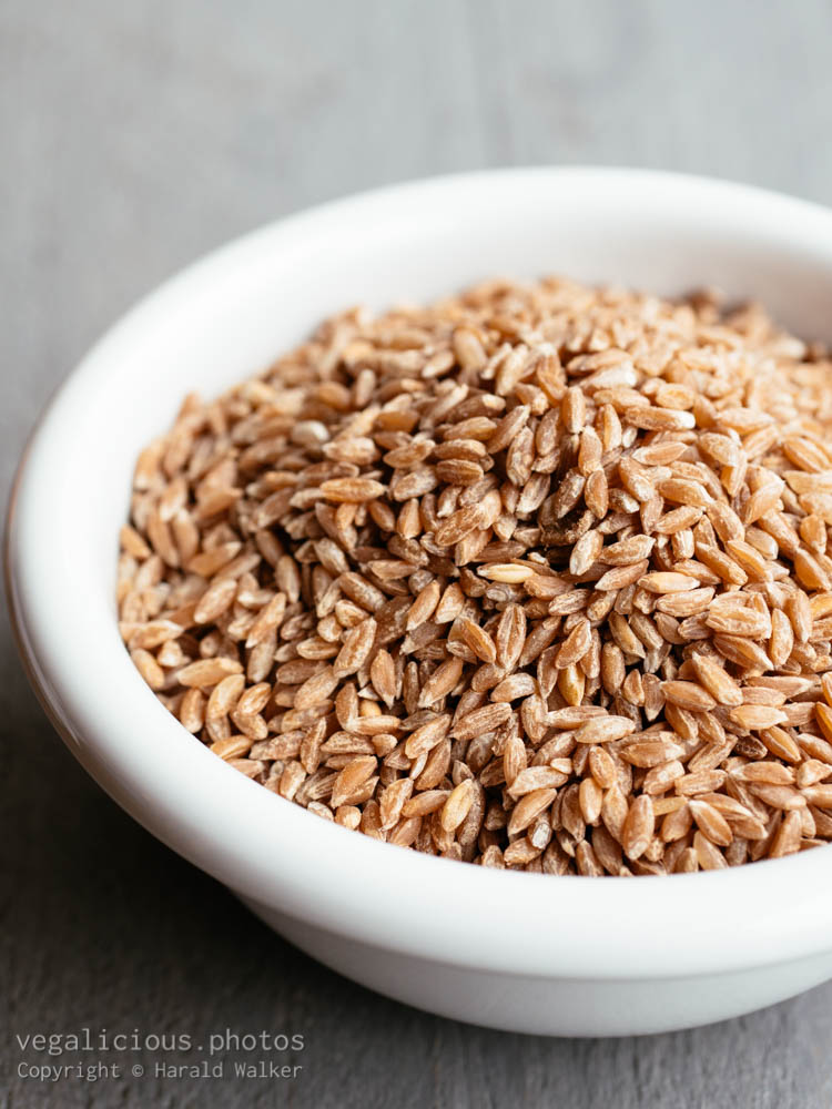 Stock photo of Emmer wheat