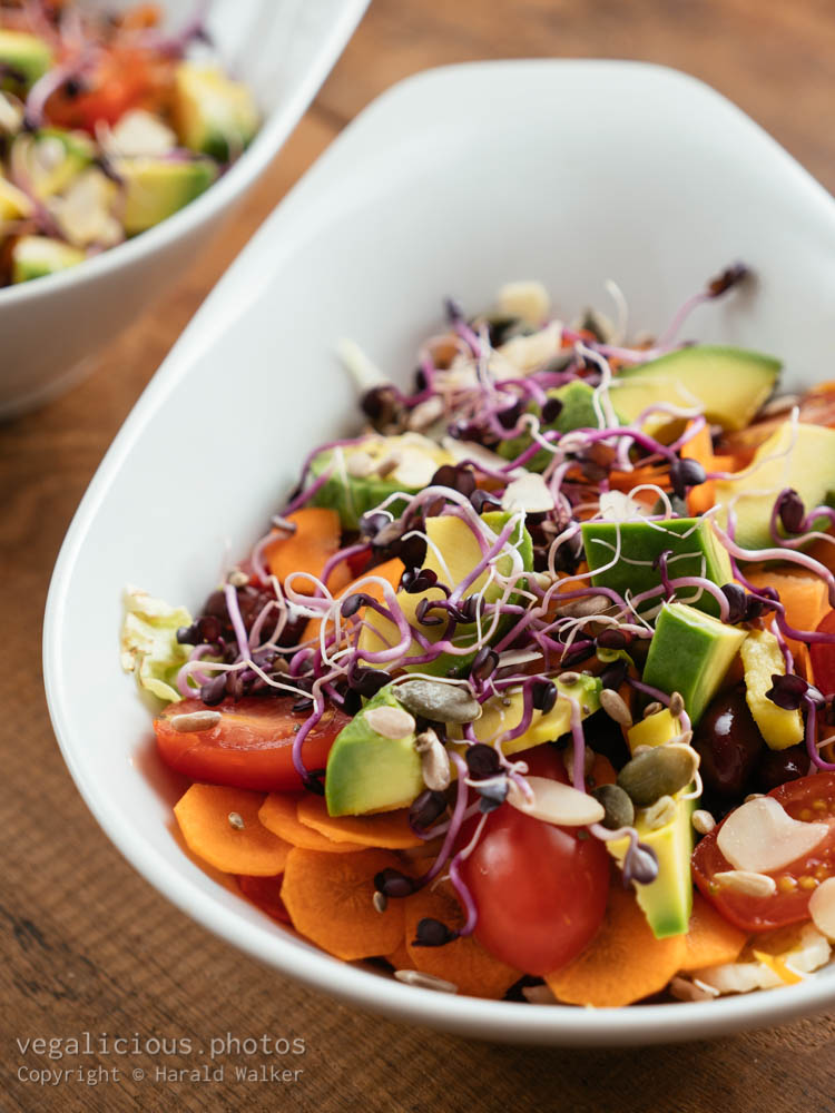 Stock photo of Mixed Salad with Sprouts and Seeds