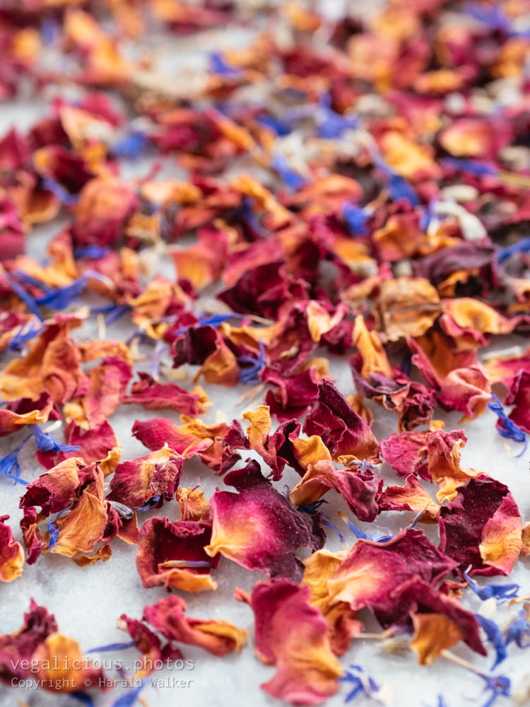 Stock photo of Flower mixture