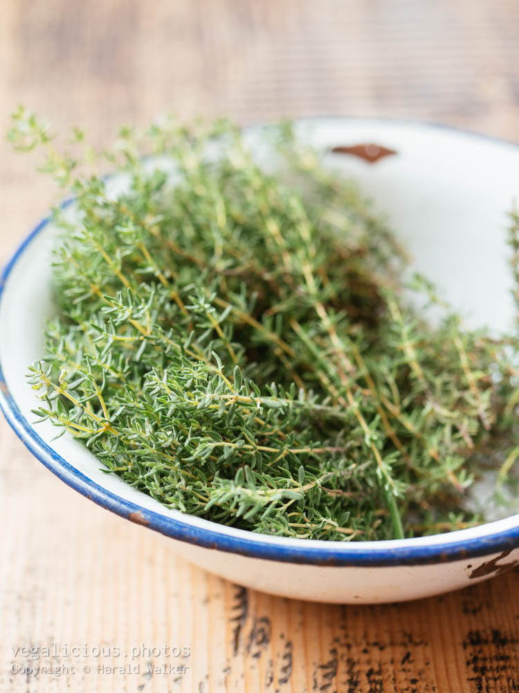 Stock photo of Thyme
