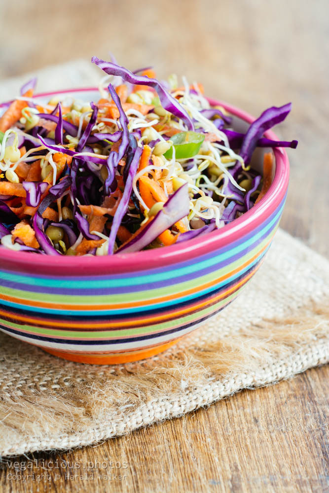 Stock photo of Winter Slaw with Sprouted Lentils