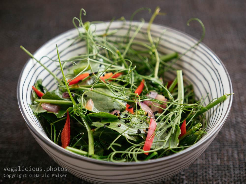 Stock photo of Pea Tendril Salad