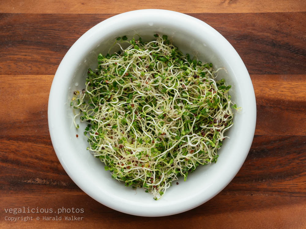 Stock photo of Rapini sprouts