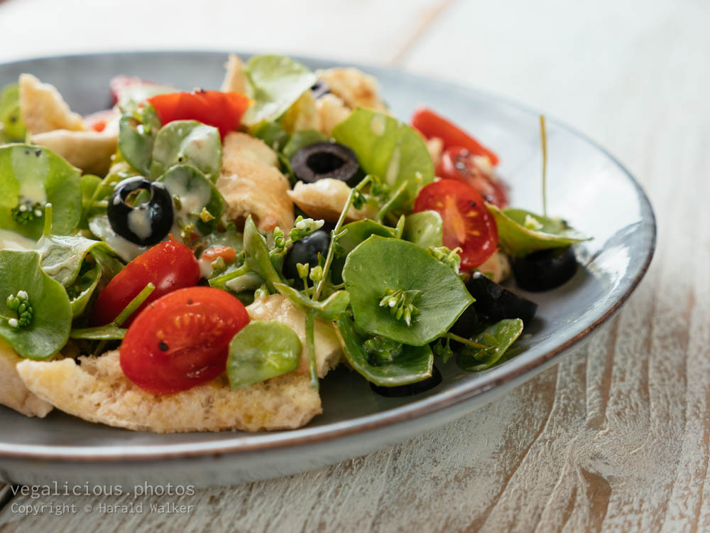 Stock photo of Purslane Fattoush