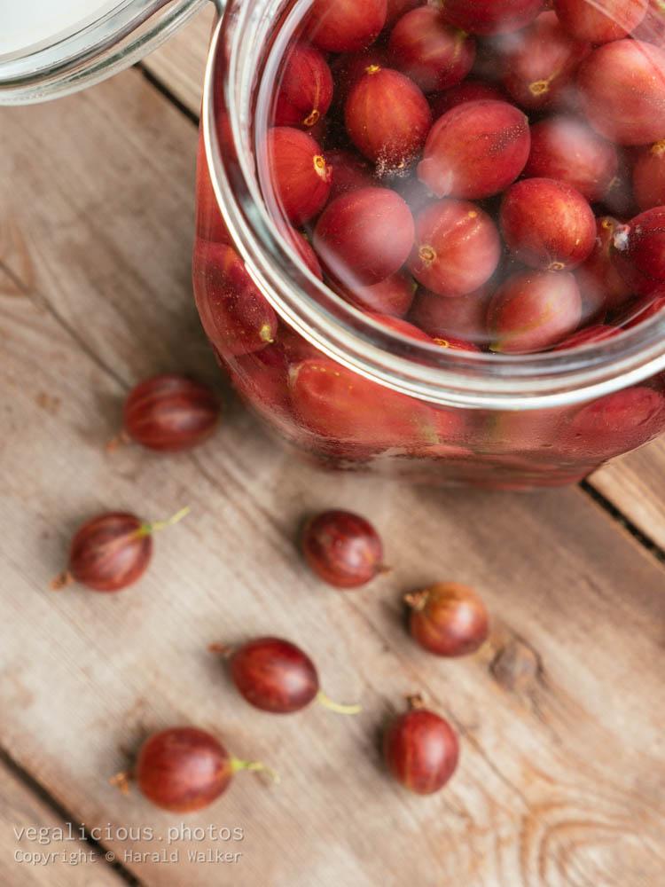 Stock photo of Gooseberry Gin