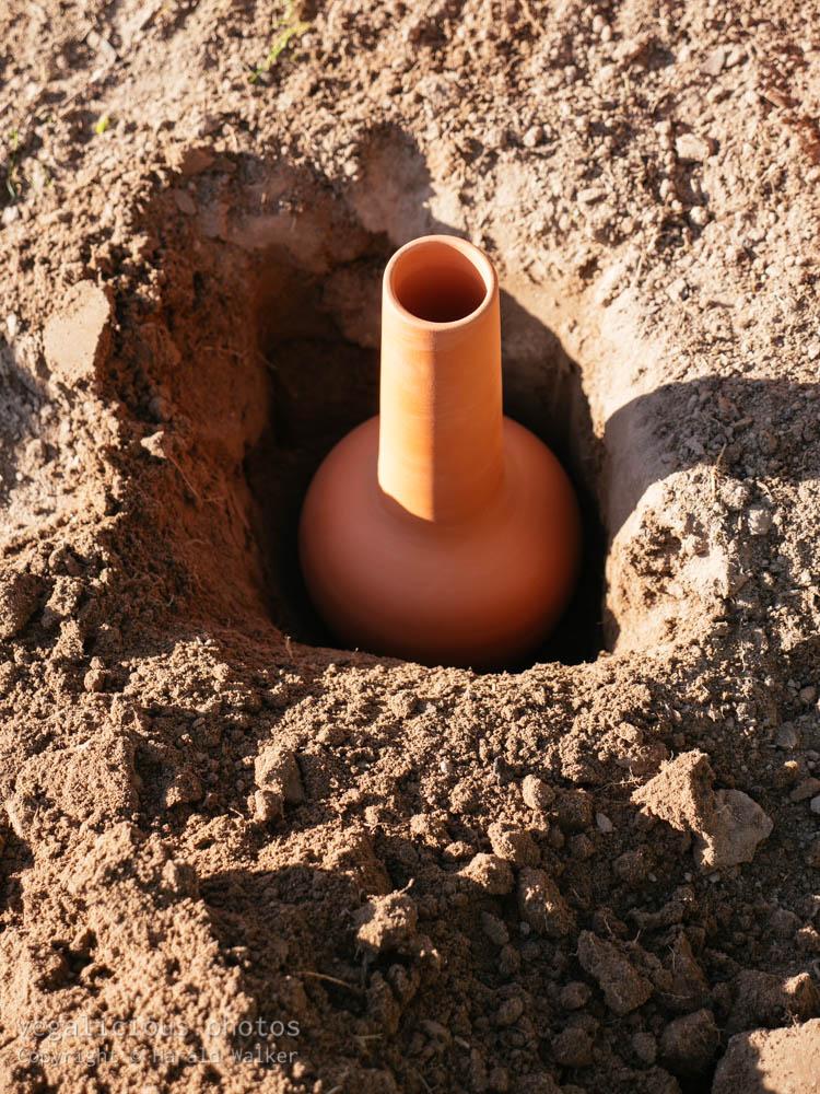 Stock photo of Olla pot