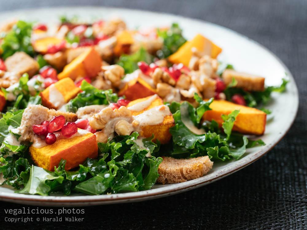 Stock photo of Fall Panzanella Salad