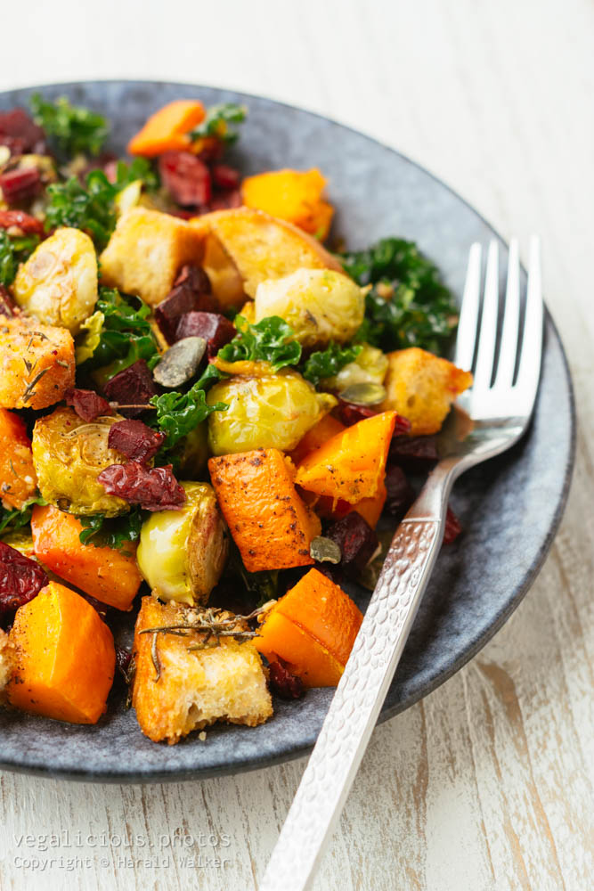 Stock photo of Autumn Harvest Panzanella