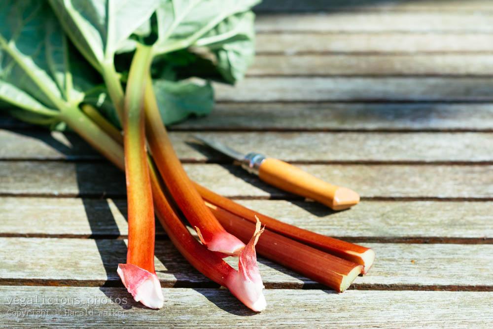 Stock photo of Fresh rhubarb