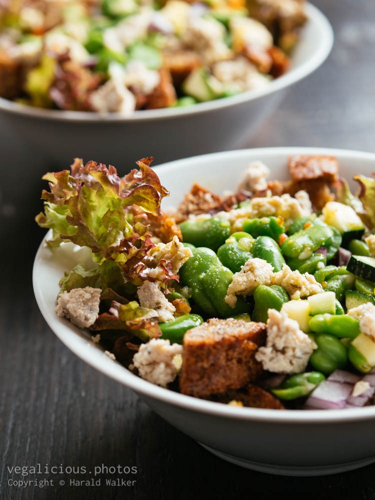 Stock photo of Fava Bean Panzanella