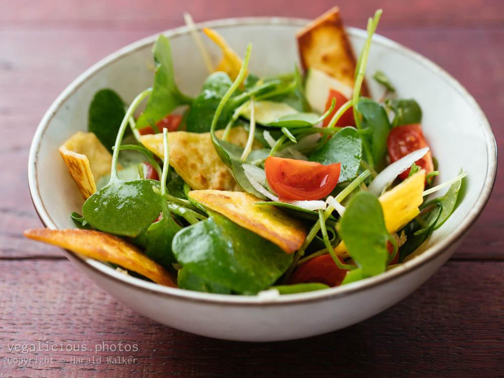 Stock photo of Winter purslane salad