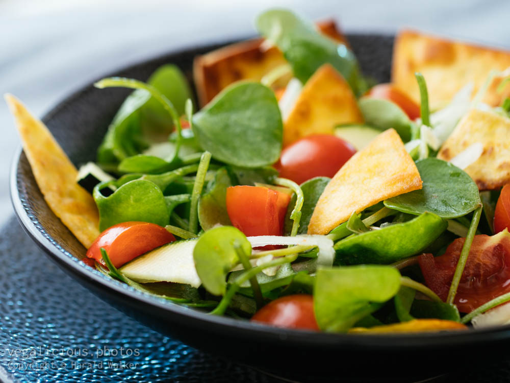 Stock photo of Winter purslane salad