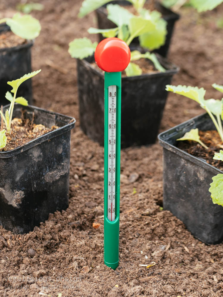 Stock photo of Soil thermometer