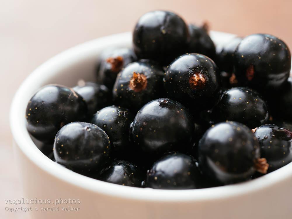 Stock photo of Fresh blackcurrants