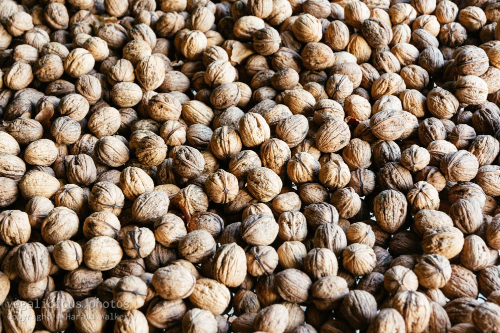 Stock photo of Drying walnuts