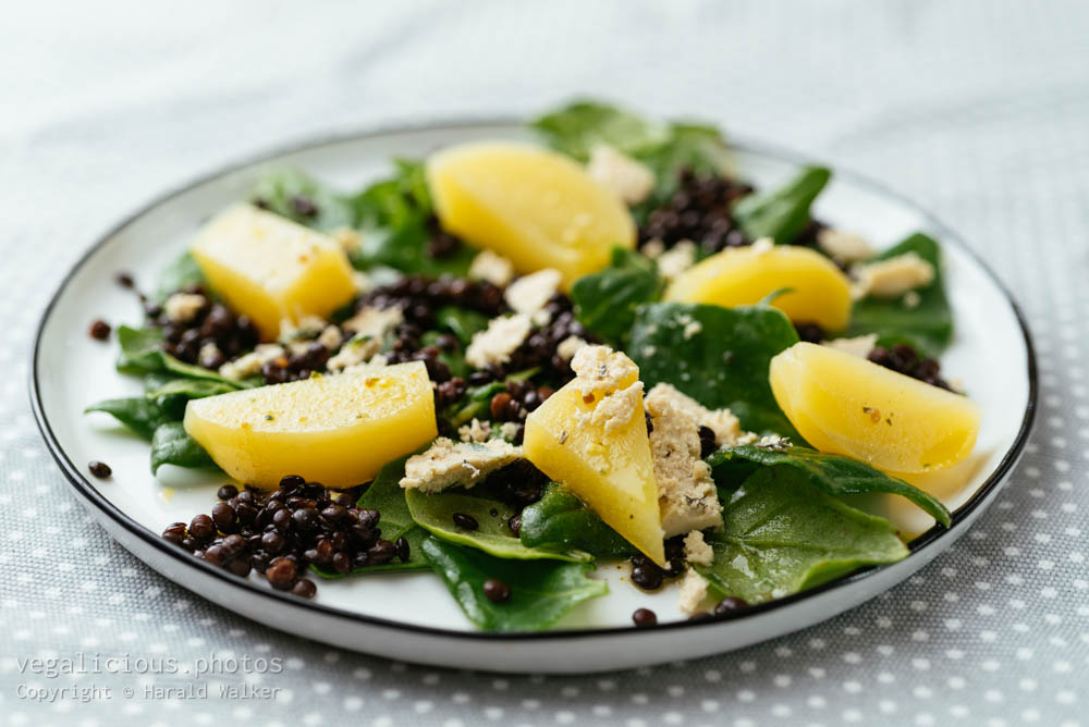 Stock photo of Lentil, Golden Beet and Spinach Salad