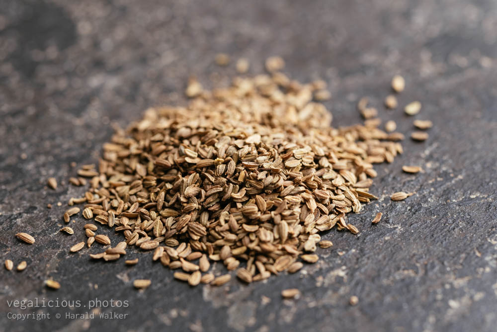 Stock photo of Carrot seeds