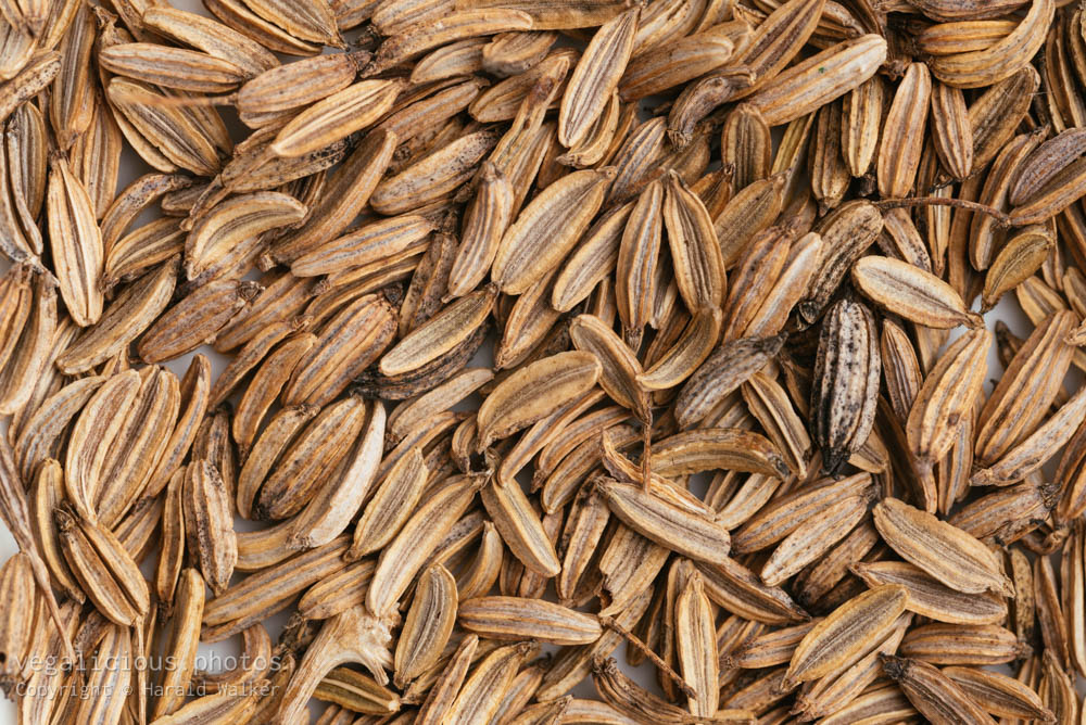 Stock photo of Fennel seeds
