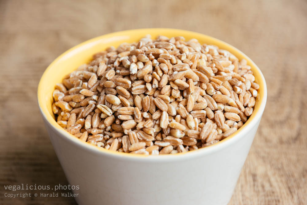 Stock photo of Pearled spelt