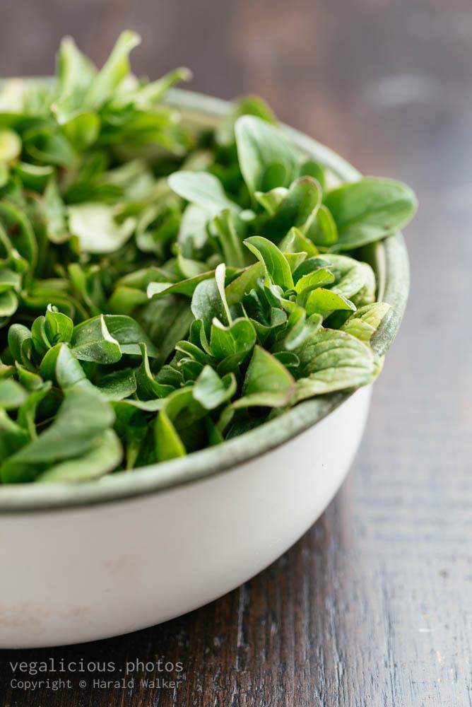 Stock photo of Organic Corn Salad