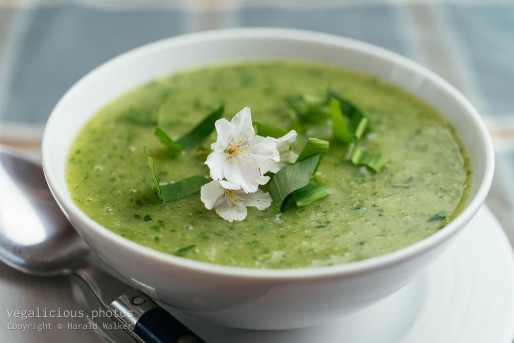 Stock photo of Potato and Wild Garlic Soup