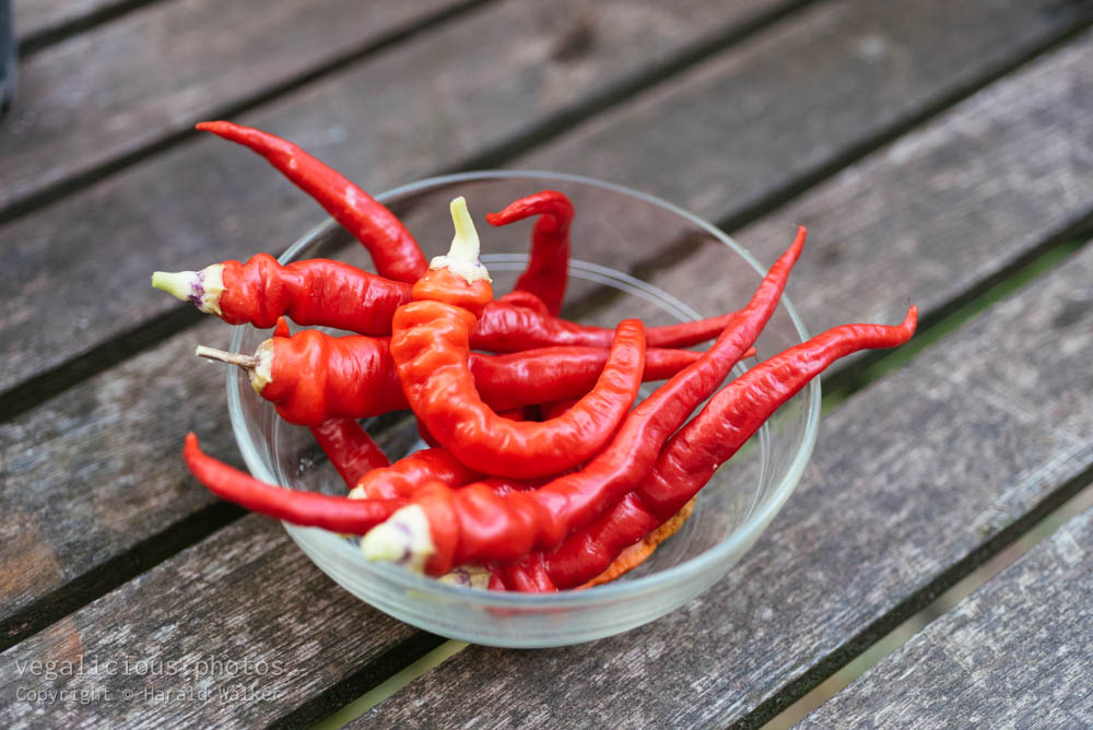 Stock photo of Cayenne peppers